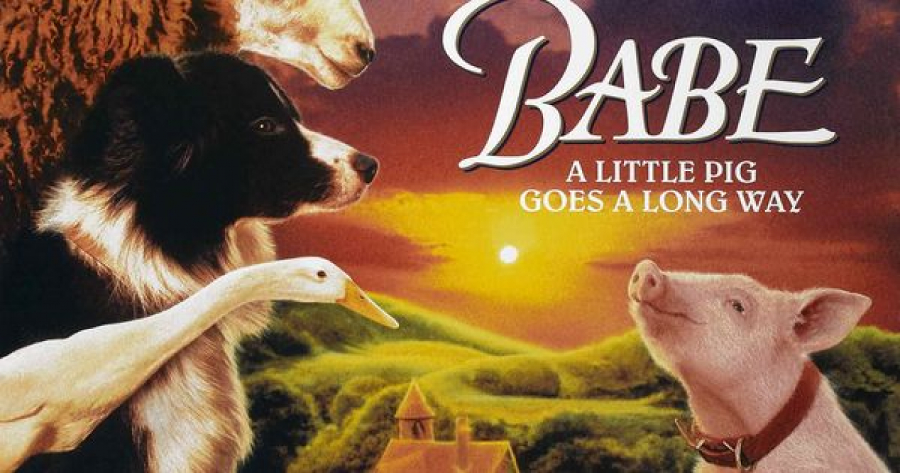 an examination of the movie babe From the beginning of the film, the audience is reminded of the precarity and  violence endured by most pigs the film introduces babe inside a concentrated.