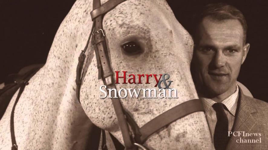 Watch Harry Amp Snowman 2015 Free On 123movies Net