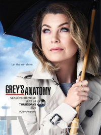 Grey&#39s Anatomy Season 12