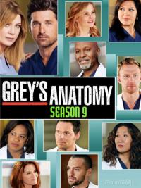 Grey&#39s Anatomy Season 9