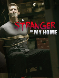 A Stranger in My Home Season 2